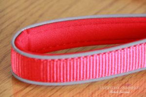 Dogness Leash (3)