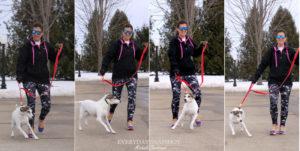 Dogness Leash (13)