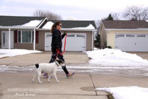 Dogness Leash (9)