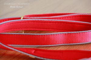 Dogness Leash (4)